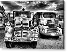 Acrylic Print featuring the photograph Two Old Beauties by Jeff Swan