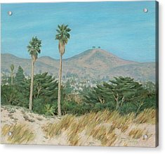 Two Tree's From Ventura State Park Acrylic Print by Tina Obrien