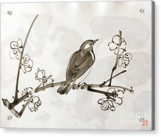 Ume Uguisu Acrylic Print
