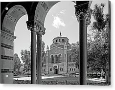 University Of California Los Angeles Powell Library Acrylic Print by University Icons