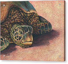 Acrylic Print featuring the painting Honu At Rest by Darice Machel McGuire