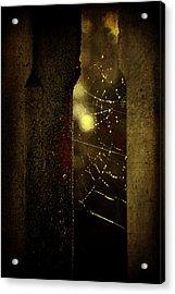 Untitled Acrylic Print by Valmir Ribeiro