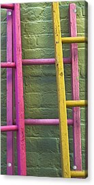 Acrylic Print featuring the photograph Upwardly Mobile by Skip Hunt