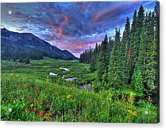 Valley View Acrylic Print by Scott Mahon