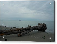 Acrylic Print featuring the photograph Vancouver Tower Beach  by Steven Richman