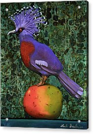 Victoria Crowned Pigeon On A Mango Acrylic Print by Leah Saulnier The Painting Maniac