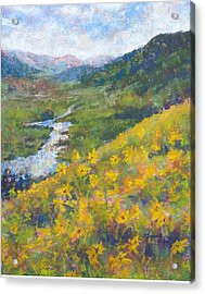 View From Baxters Gulch Acrylic Print by Becky Chappell