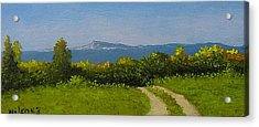 Acrylic Print featuring the painting View From The Rim by Fred Wilson