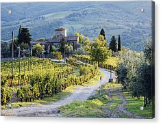 Vineyards And Farmhouse Acrylic Print by Jeremy Woodhouse