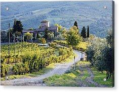 Vineyards And Farmhouse Acrylic Print