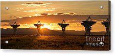 Vla At Sunset Acrylic Print by Matt Tilghman