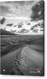 Walking On Sand 2 Acrylic Print