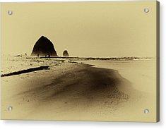 Walking The Beach Acrylic Print by David Patterson