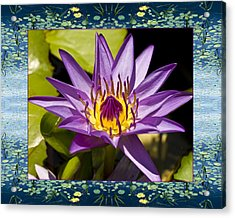 Acrylic Print featuring the photograph Water Star by Bell And Todd