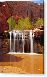 Waterfall In Coyote Gulch Utah Acrylic Print
