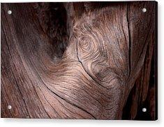 Waves And Wood #2 Acrylic Print