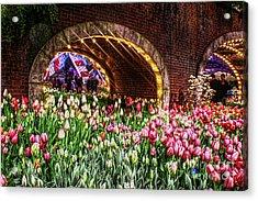 Welcoming Tulips Acrylic Print
