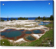 West Thumb Geyser Basin In Yellowstone National Park Acrylic Print by Louise Heusinkveld