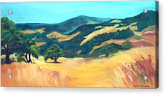 Western Hills Acrylic Print by Anne Trotter Hodge