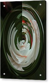 Acrylic Print featuring the photograph White Form by Nareeta Martin