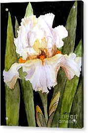 White Iris In The Garden Acrylic Print