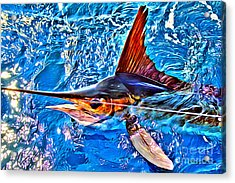 White Marlin Acrylic Print by Carey Chen
