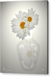 White On White Daisies Acrylic Print by Joyce Dickens
