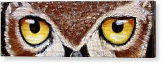 Whos Watching Who Acrylic Print by Darlene Green