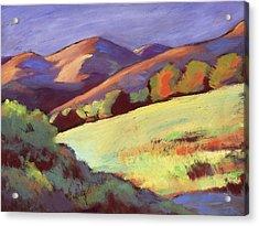 Wildcat Canyon Hillside Acrylic Print