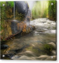 Acrylic Print featuring the photograph Wilderness Hot Springs by Leland D Howard
