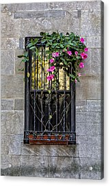 Window Acrylic Print