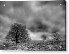 Winslow Park Acrylic Print
