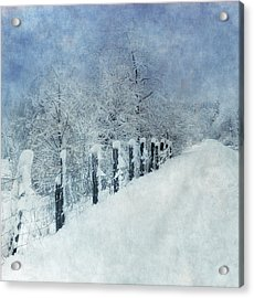 Acrylic Print featuring the photograph Winter by Angie Vogel