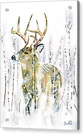 Winter Deer Acrylic Print by Antony Galbraith
