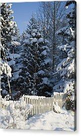 Winter Acrylic Print by Igor Sinitsyn