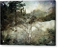 Winter Mood Acrylic Print