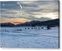Winter Range Acrylic Print