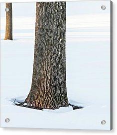 Winter Scene - Abstract Acrylic Print