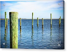 Acrylic Print featuring the photograph Wood Pilings by Colleen Kammerer
