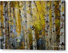 Yellow Aspens Acrylic Print by Marilyn Sholin