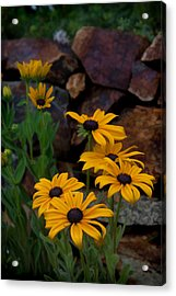 Acrylic Print featuring the photograph Yellow Beauty by Cherie Duran