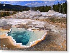 Yellowstone Geyser Acrylic Print by Patrick  Flynn