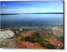 Acrylic Print featuring the photograph Yellowstone Lake Colors by Frank Romeo