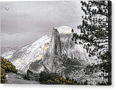 Yosemite Half Dome Acrylic Print by Chuck Kuhn