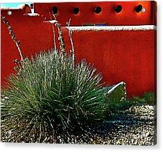 Yucca And Adobe Acrylic Print