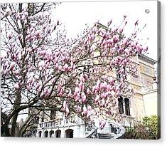 zurich- Villa patumbah Acrylic Print