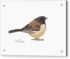 Bird Acrylic Print by Penko Gelev
