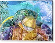 10730 Mr Tortoise Acrylic Print
