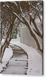 10735 Crepe Myrtles In Snow Acrylic Print by John Prichard