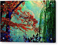 Autumn Colors Acrylic Print by Aron Chervin